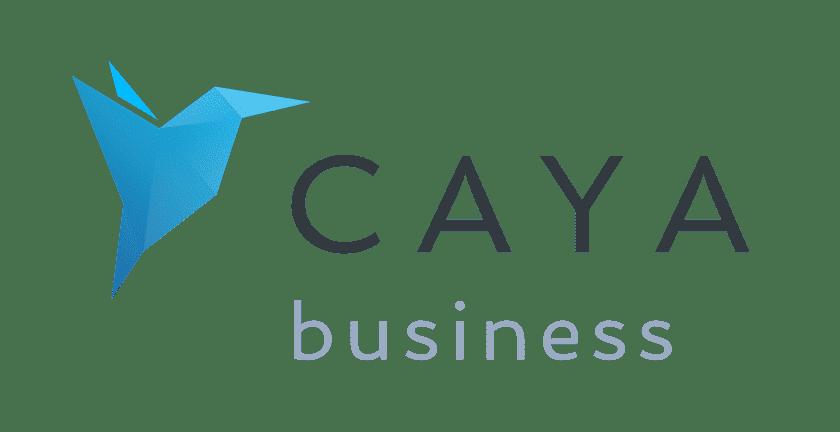 Rechnungen automatisch aus CAYA importieren